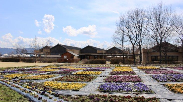 街そのものがアプローチであり敷地である「安曇野ちひろ美術館」